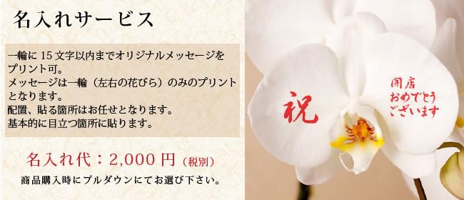 名入れサービス 2,000円